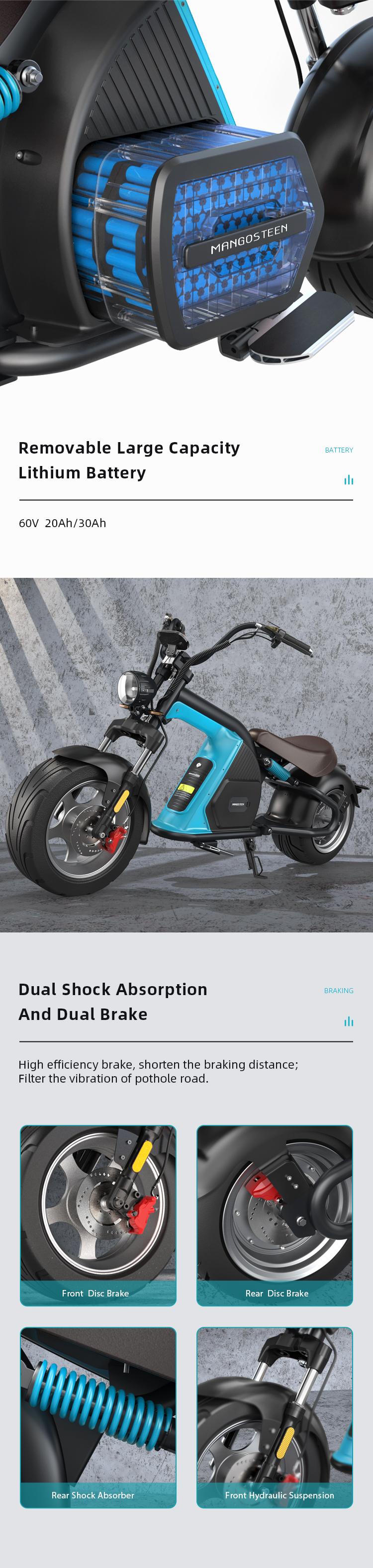 Elektroroller Harley Scooter Citycoco Elektroscooter COC EEC ROODER (2)