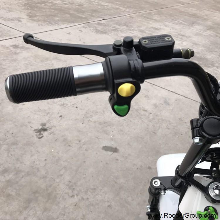 2 ratų suaugusiųjų elektrinis motoroleris su CE FCC RoHS sertifikavimo priekinis amortizatorius riebalų padangų 1000W varikliu 48V 60V 72V ličio baterija nuo Harley Miestas kokoso gamintojo (9)
